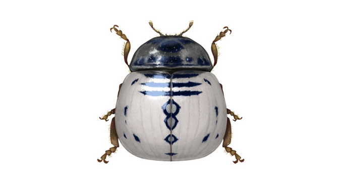 Star Wars-insekter invaderar och imponerar!