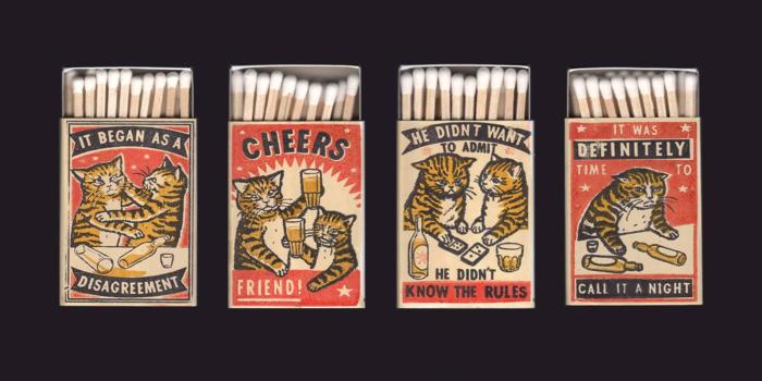 Coola katter som kan bli dina…